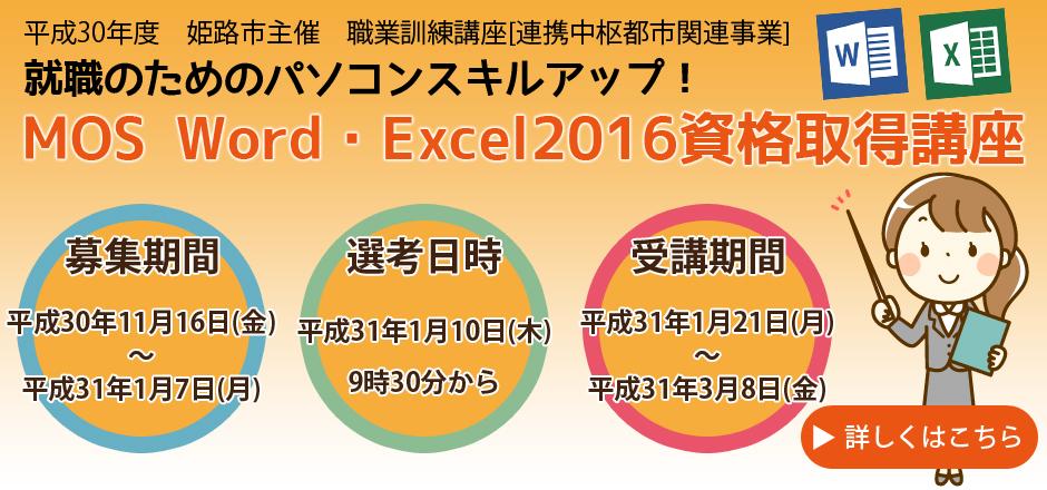 就職のためのパソコンスキルアップ!MOS Word・Excel2016資格取得講座